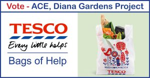 Vote for ACE at Tesco Bags of Help