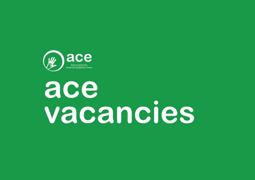 ACE Vacancies image