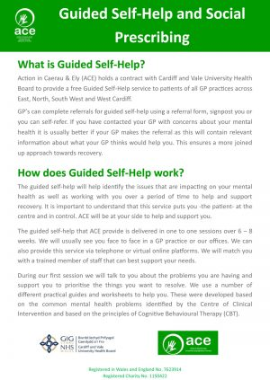 ACE Guided Self-Help cover image English